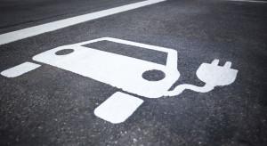Elektromobilność na razie kuleje. Są dwie główne przyczyny