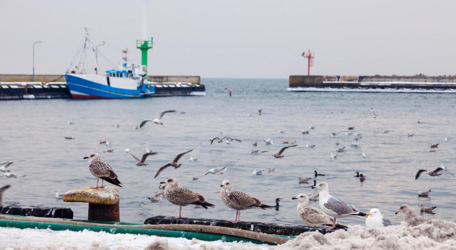 NIK: średnie i małe polskie porty morskie toną