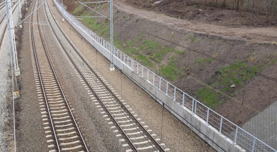 Litewskie koleje zakończyły odbudowę szlaku kolejowego Możejki-Renge