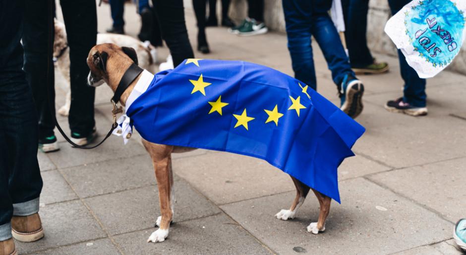 BrexitBrief#29: Flextension, czyli brexit do końca roku? May próbuje pozyskać opozycję i odłożyć datę wyjścia z UE