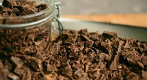 Kakaowce umierają, a naukowcy przewidują, kiedy zabraknie czekolady
