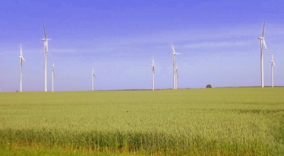 Energa ruszyła z budową farmy wiatrowej Przykona