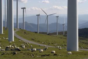 Spółka Boryszewa kupuje farmę wiatrową