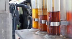 Unia padła ofiarą własnych działań. Na horyzoncie biopaliwowa wojna