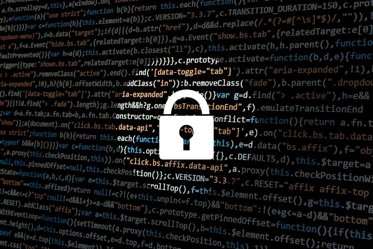 Amerykanie i Europejczycy mają zbliżone podejście do ochrony swoich danych. Fot. Pixabay