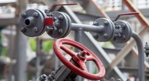 Rafinerie szukają ratunku. Biopaliwa kuszącą alternatywą