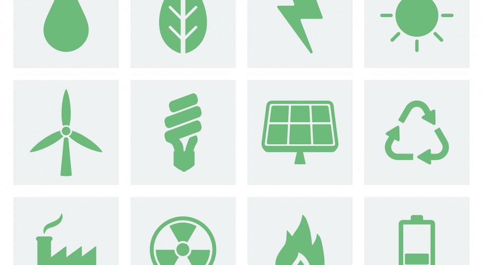 """Europa głosowała za czystą energią. Polska? """"Mamy to gdzieś!"""""""