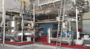 Największy polski tartak Ikei inwestuje w produkcję zielonej energii
