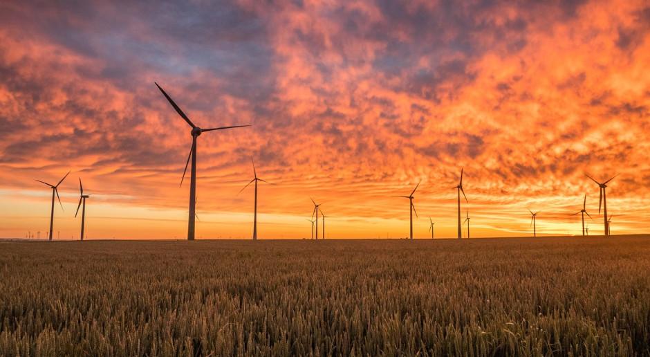 Wszystko wskazuje, że w tym roku doczekamy się przełomu w energetyce wiatrowej