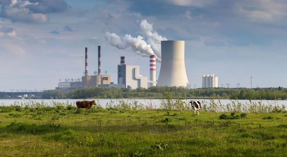 PGE, Enea i Tauron mogą być warte 9,5 mld zł więcej
