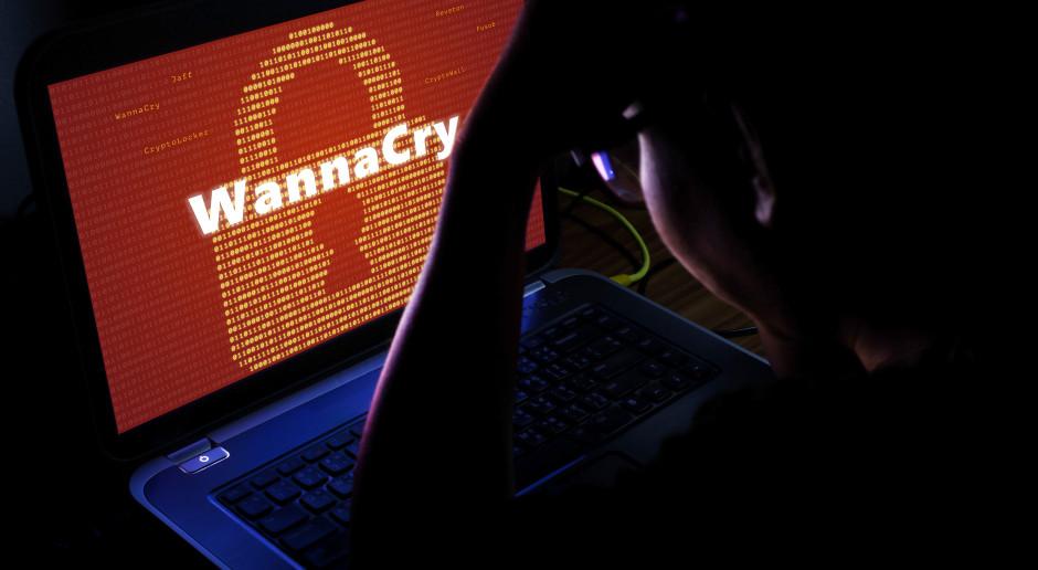 Pogromca wirusa WannaCry uniknie więzienia za działalność hakerską