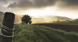 MRiRW za ograniczeniem emisji amoniaku w rolnictwie