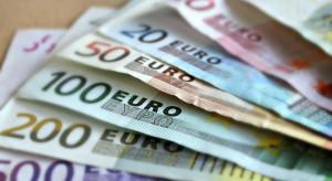 Rośnie liczba dokonywanych przez Polaków transakcji w euro