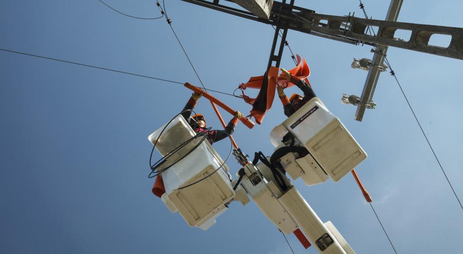 Ilu klientów mają najwięksi dystrybutorzy energii?