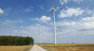 Zobacz top 10 firm, które rządzą w polskich wiatrakach