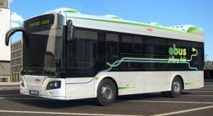 W ciągu dwóch lat ARP chce wyprodukować ok. 300 sztuk e-busów