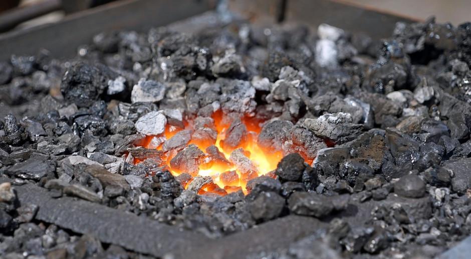 Minister Kowalczyk zdradza, kiedy Polska całkowicie zrezygnuje z węgla
