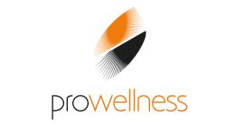 Pro-Welness - Twoje Spa i Wellness, Fotele Masujące i Wanny Spa