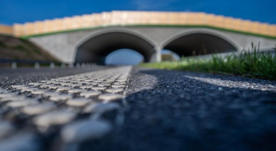 Osiem ofert na budowę drogi ekspresowej S19. Turecka najtańsza