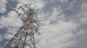 PSE: udane testy usługi DSR - ograniczenia zużycia na żądanie operatora