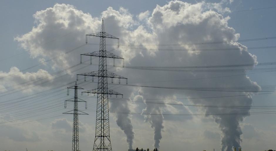 Belgia: mijający rok przyniósł poprawę jakości powietrza