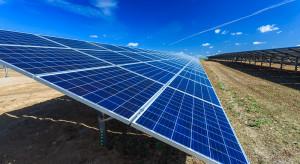 Erato Energy chce potroić zyski z fotowoltaiki
