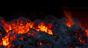 Samorządy bronią węgla