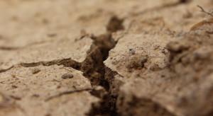 Marek Gróbarczyk: możemy mieć suszę najsilniejszą od 50 lat