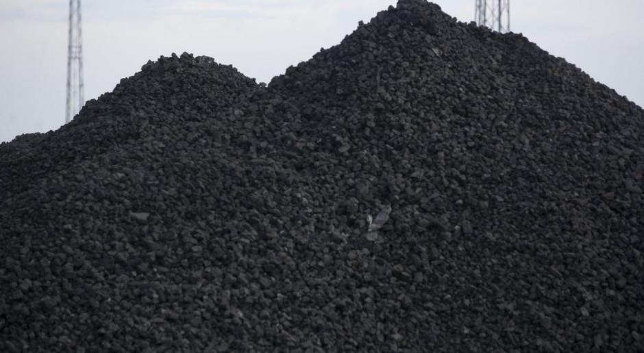 Zakupy węgla online i z dostawą do domu. PGG ułatwia życie klientom