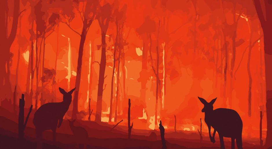 """ONZ ogłosiła """"czerwony alarm dla planety"""""""