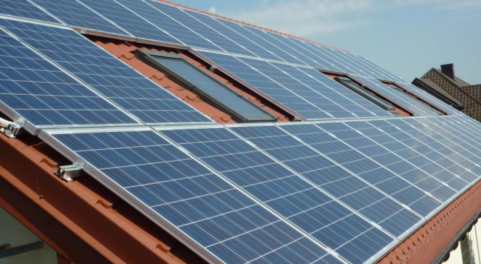 PGE: wkrótce jeszcze więcej zielonej energii w sieci