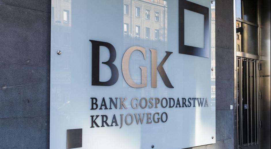 BGK: prawie pół biliona złotych ze środków europejskich w ciągu dekady