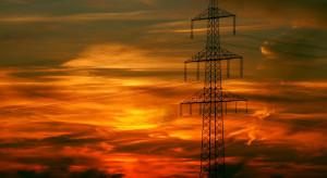 Epidemia doprowadziła do bezprecedensowych zmian w energetyce