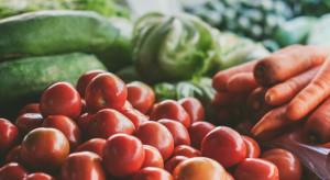 PIE: w UE wzrost sprzedaży żywności, farmaceutyków, kosmetyków i sprzętu medycznego