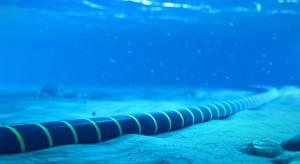Polska i Litwa wybudują podmorski kabel