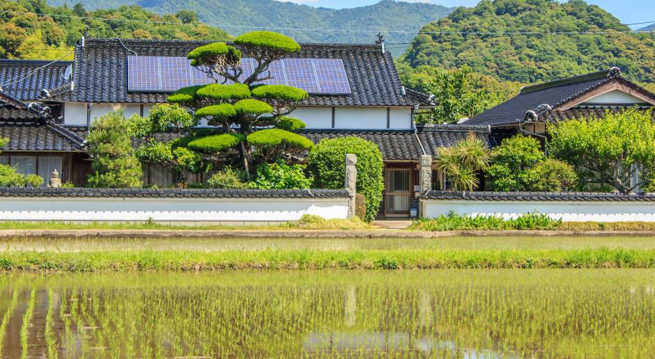 Japończycy mają prąd prawie za darmo. Efekt koronawirusa i inwestycji w OZE