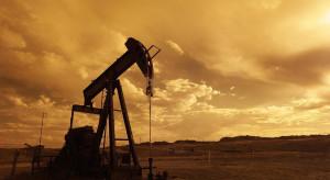 W krajach OPEC+ nie ma jednomyślności. Ceny ropy spadają