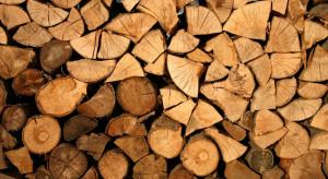 Resort ma pomysł jak zwiększyć podaż biomasy