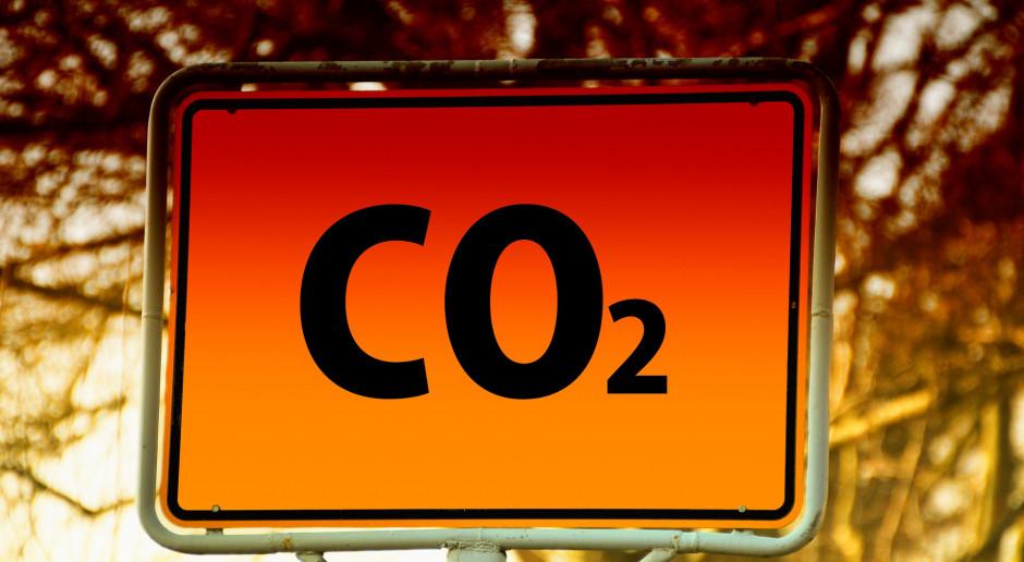 Niemcy chcą od września szybkich prac nad nowymi celami ws. redukcji emisji CO2