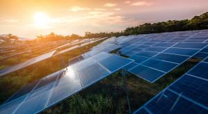 Columbus Energy rozmawia o budowie fam fotowoltaicznych 1,5 tys. MW