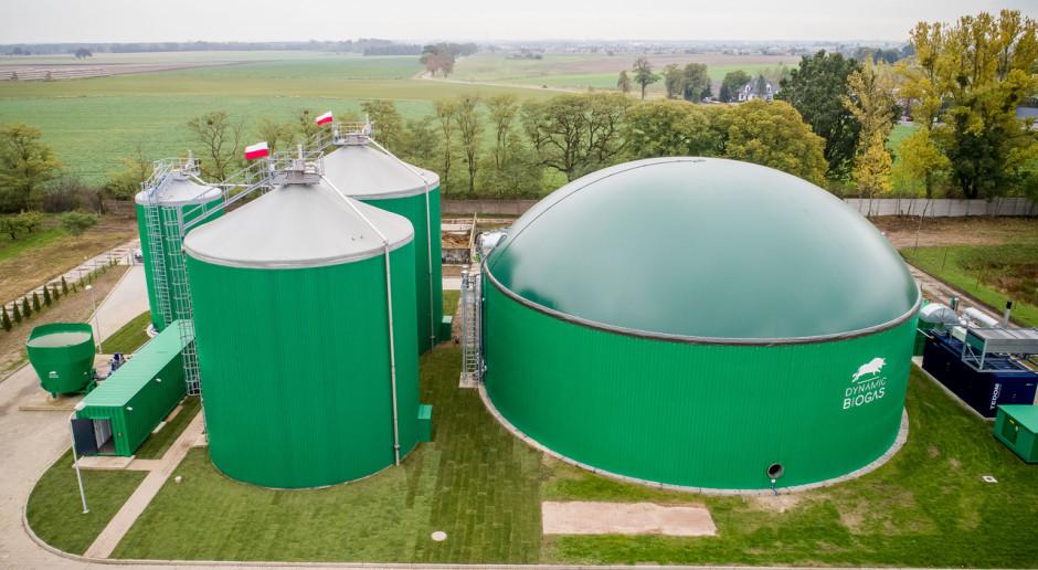 Gazprom interesuje się europejskim biogazem