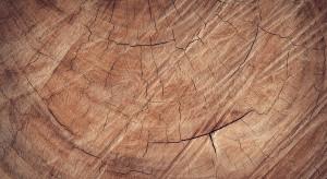 """Mówią """"nie"""" nowej definicji drewna energetycznego"""