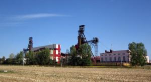 Strajkuje ważny dla światowego rynku nawozów białoruski zakład