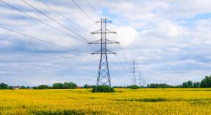 Energa upałów się nie boi. Scenariusze dla sieci przygotowane