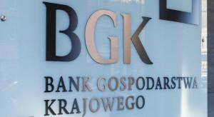 BGK uruchamia pierwszy taki program w Unii. W grze 11,5 mld zł