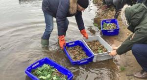 Raki i ryby w działaniach ekologicznych grupy Energa