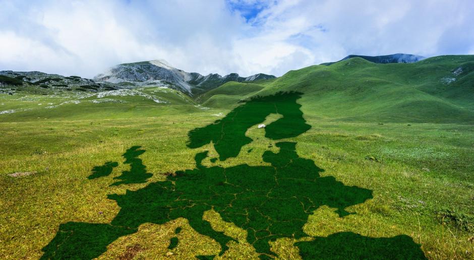 InnoEnergy: Covid-19 nie zdoła zatrzymać zielonej transformacji energetycznej