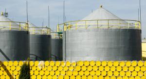 Wielkie hamowanie na rynku ropy