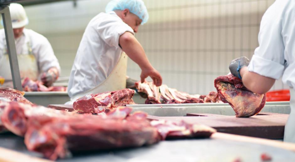 Niemcy przeszukują zakłady mięsne w całym kraju