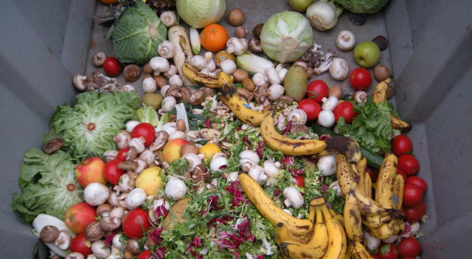 Szef Tesco apeluje do państw i biznesu: Nie marnujmy jedzenia!